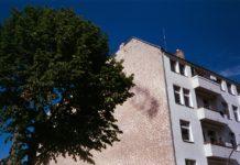 Stort træ ved siden af lejligheder